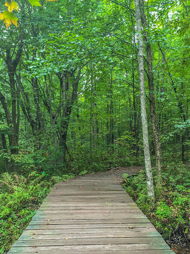 Boardwalk on the trail to Morgan Falls at St. Peter's Dome State Natural Area