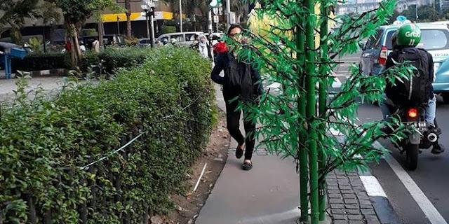 Nih Pohon Plastik Buat Lucu-lucang Saja? Mudah Buang Duit, Setelah Dapat Kritik Pedas Masyarakat, Akhirnya Pohon Plastik Mahal Ini Dicabut..