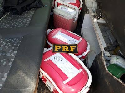 PRF apreende sangue humano sendo transportado de forma irregular na Régis Bittencourt