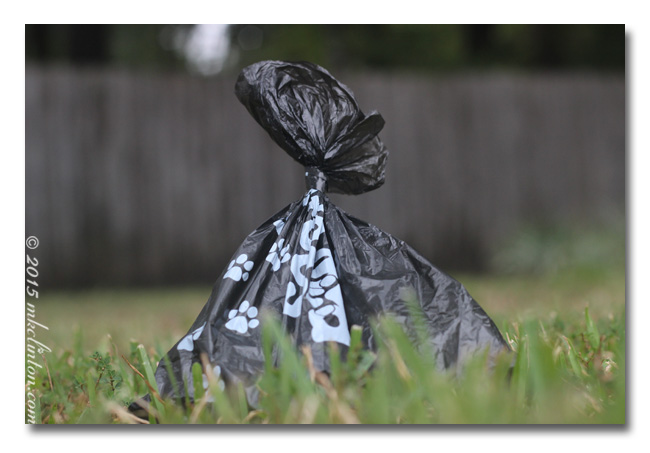 Black Sooty Paw Paw Bag tied up and in the green grass