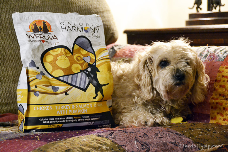 Caloric Harmony and Caloric Melody Dry Dog Food