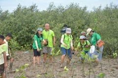 Cegah Abrasi, Karang Taruna Pati Gelar Aksi Tanam Mangrove di Pantai Kertomulyo