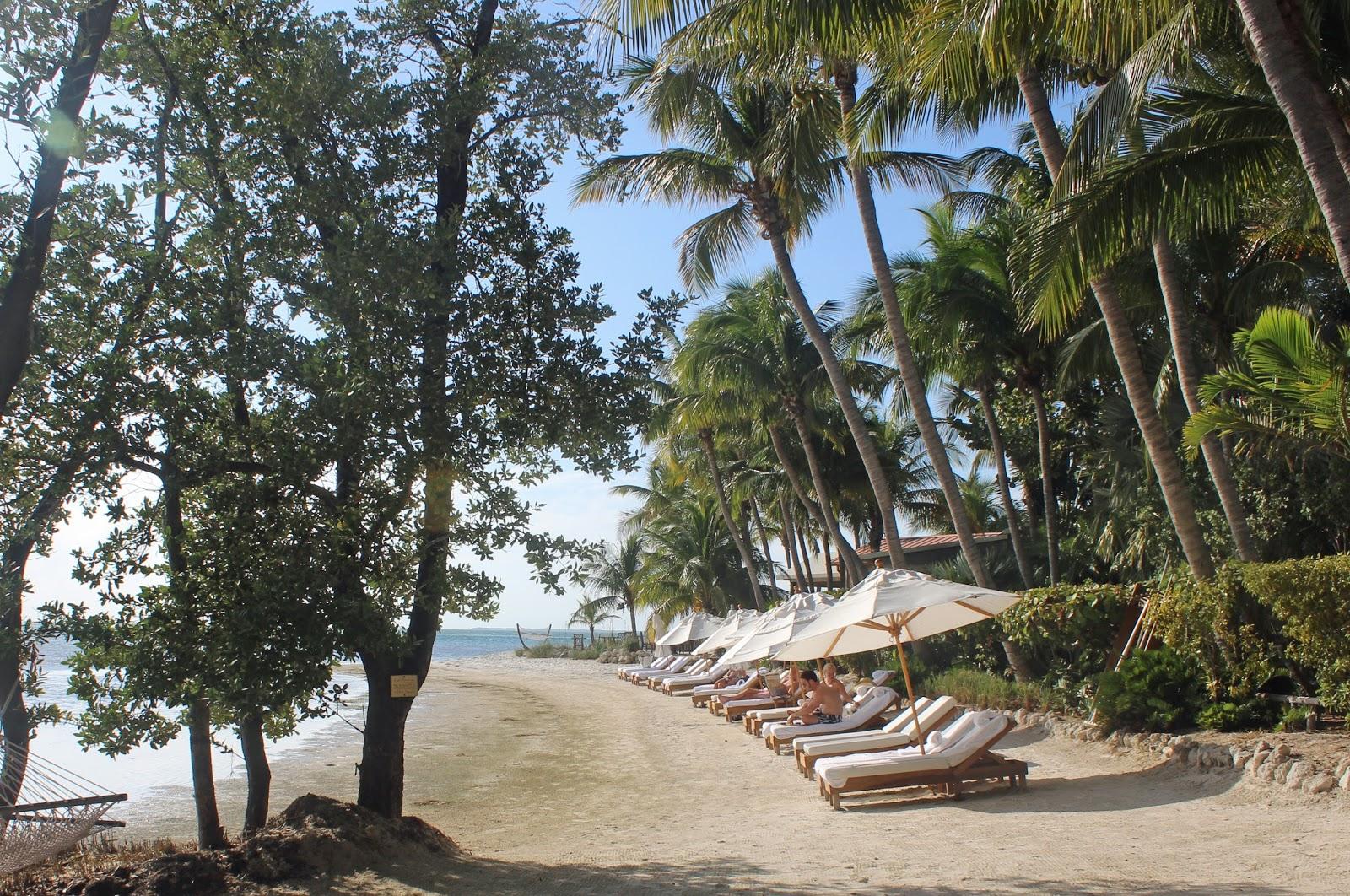 Little palm island for Little island design