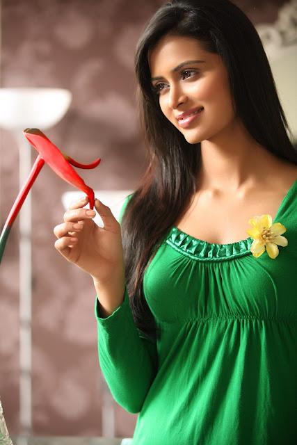 Girl Wallpapers Pics Celebrity Picture Gallery Actress Meenakshi Dixit Hot