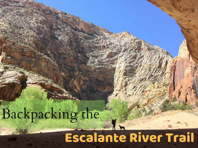 Backpacking the Escalante River Trail, Grand Staircase Escalante National Monument (GSENM), Hiking with Dogs in Utah