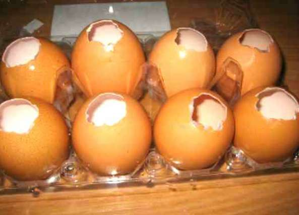 huevos, recetas, comida, gastronomía, cocina