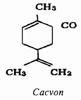 Thành phần hóa học Bạc Hà châu Âu - Mentha piperita - Nguyên liệu làm thuốc Chữa Cảm Sốt