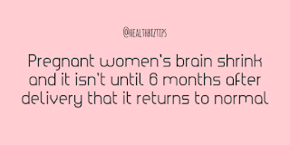 Health Facts & Tips @healthbiztips: Pregnant women's brain shrink and it isn't until 6 months after delivery that it returns to normal.