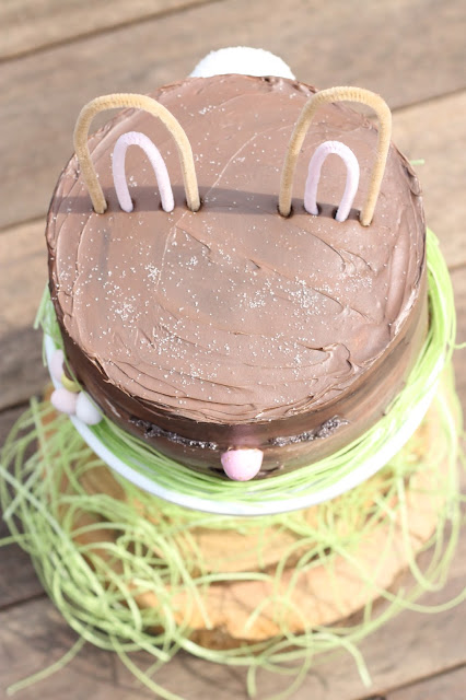 Peter Cottontail Bunny Cake - AK Party Studio