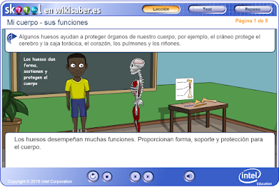 http://ww2.educarchile.cl/UserFiles/P0024/File/skoool/2010/Ciencia/body_frame_functions/