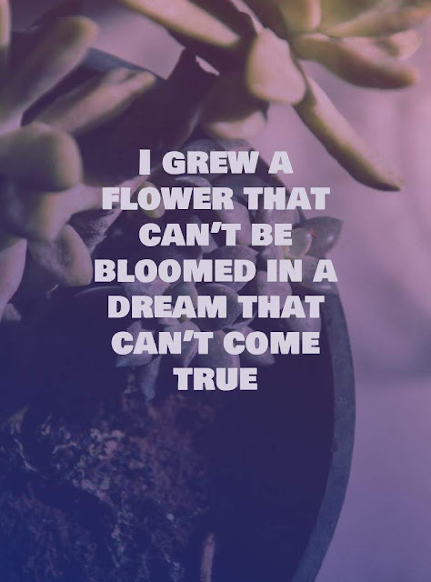 I grew a flower that can't be bloomed in a dream that can't come true