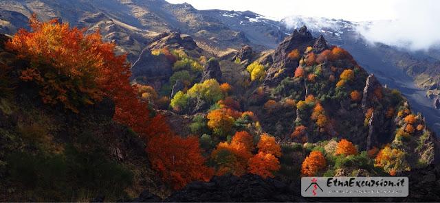 Il foliage sull'Etna