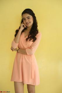 Rukshar Mir in a Peachy Deep Neck Short Dress 112.JPG