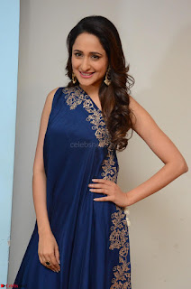 Pragya Jaiswal in beautiful Blue Gown Spicy Latest Pics February 2017 030.JPG