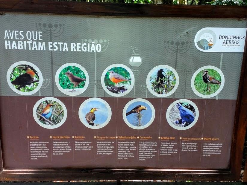 Estação animal - bondinhos em Canela: como ver a Cascata do Caracol