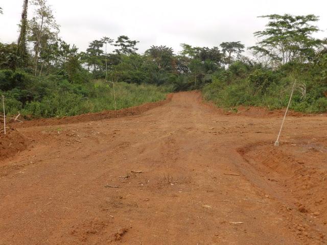 Terrain a vendre au Cameroun