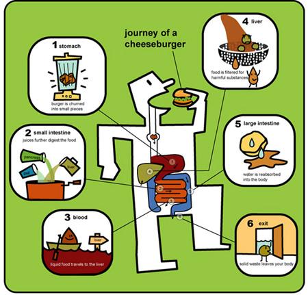 Download: Journeys Grade pdf
