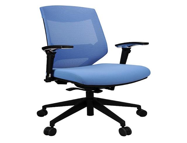 best blue ergonomic office chairs Delhi for sale discount