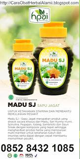 Khasiat madu Sapu jagat SJ hpai asli original suplemen kesehatan alami