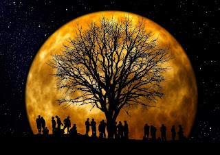 Picture of people standing below tree and moon at night