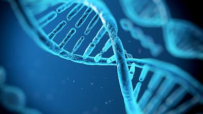 DNA, Bakteri DNAsı, Harvard Üniversitesi