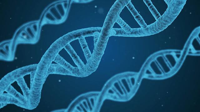 """Científicos encuentran un gen capaz de ayudar a """"frenar"""" el cáncer"""