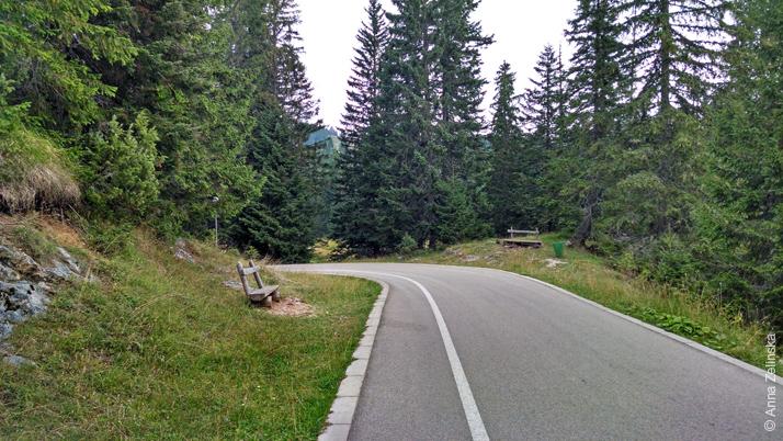 Дорога ведущая к Черному озеру, Черногория