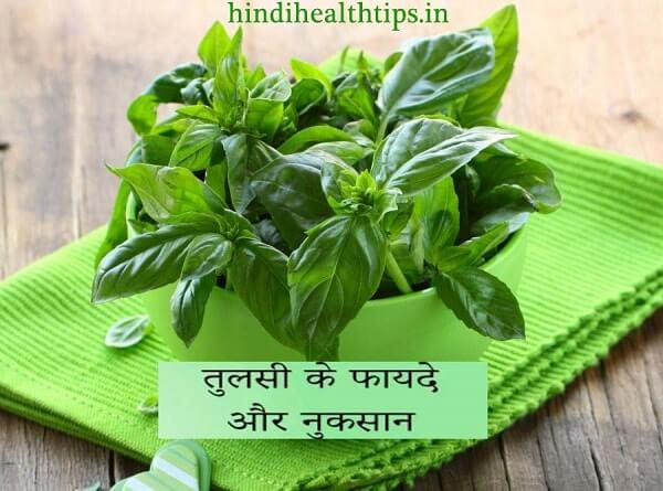 Amazing Benefits of Basil in Hindi