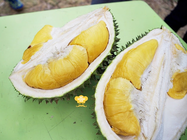 Raub Musang King Durian Buffet at Durian Wonderland