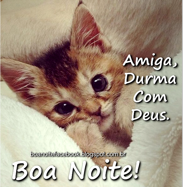 mensagem de boa noite Para Whatsapp gatinho