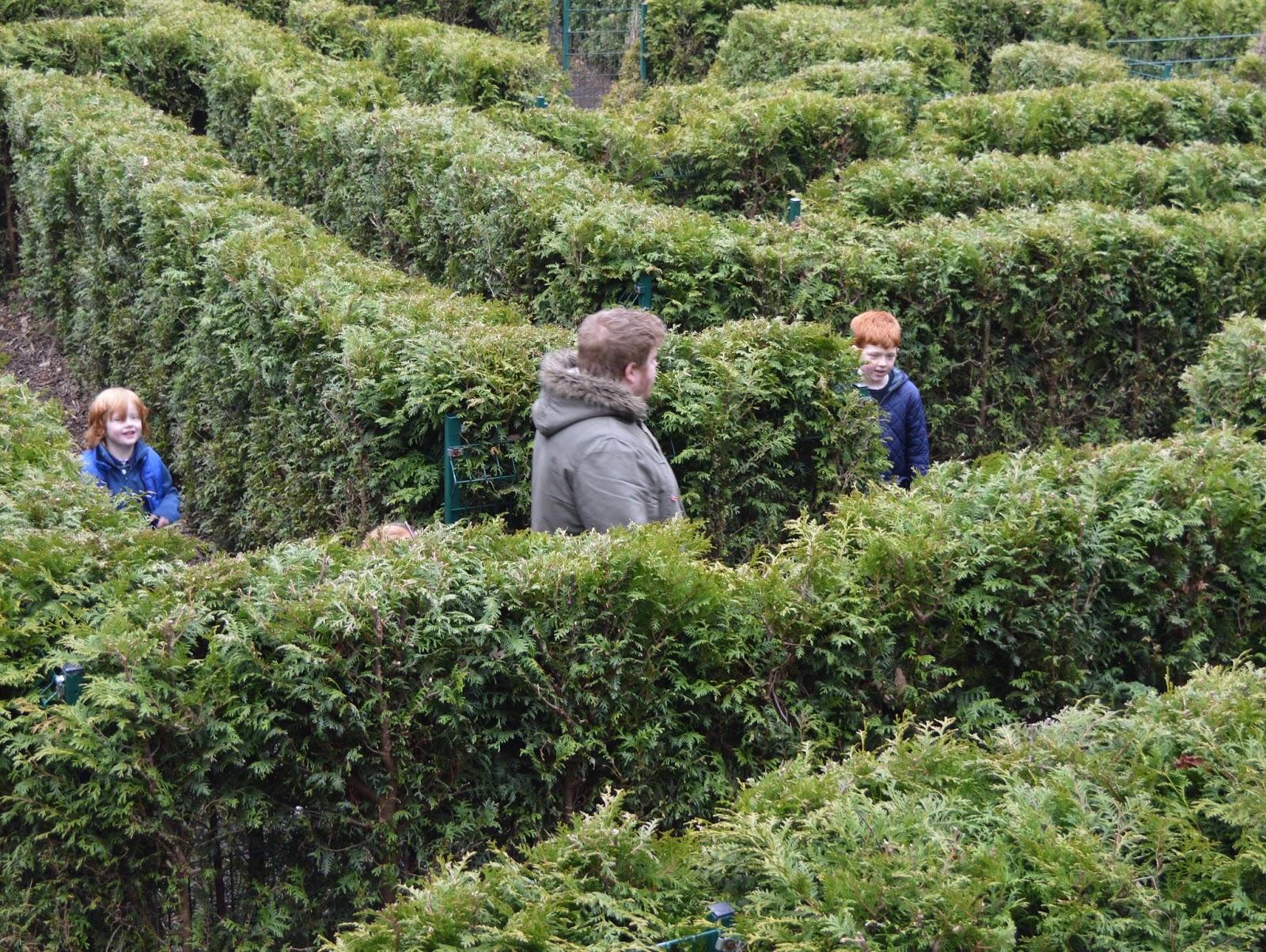 Saltwell Park Maze