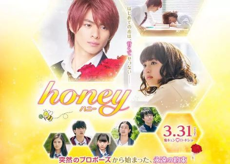 Honey Live Action Movie Subtitle Indonesia