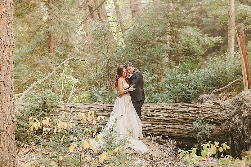 Intimate Fairytale Wedding in The Forest | Southern California ...