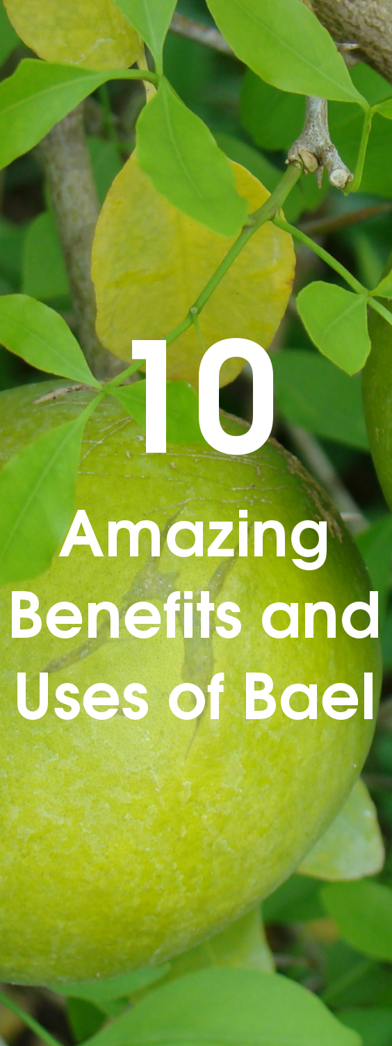 10 Amazing Benefits and Uses of Bael