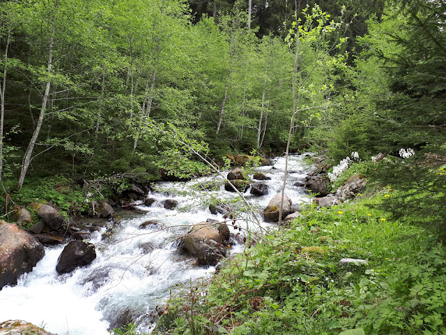 mountain river in the Wildschönau valley in Tirol, Austria