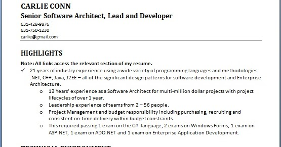 senior software architect sample resume format in word
