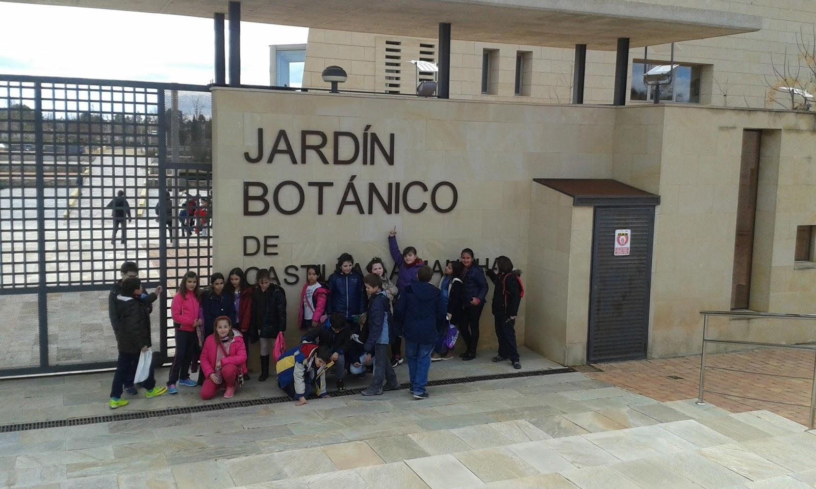 Mi cole carlos v albacete actividad conoce tu ciudad for Jardin botanico albacete