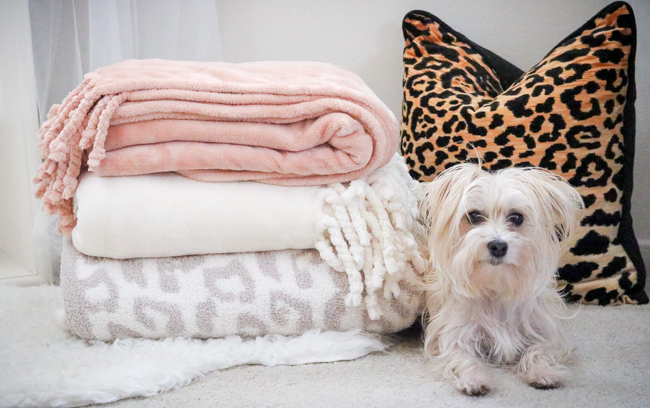 nordstrom anniversary sale 2017 blankets