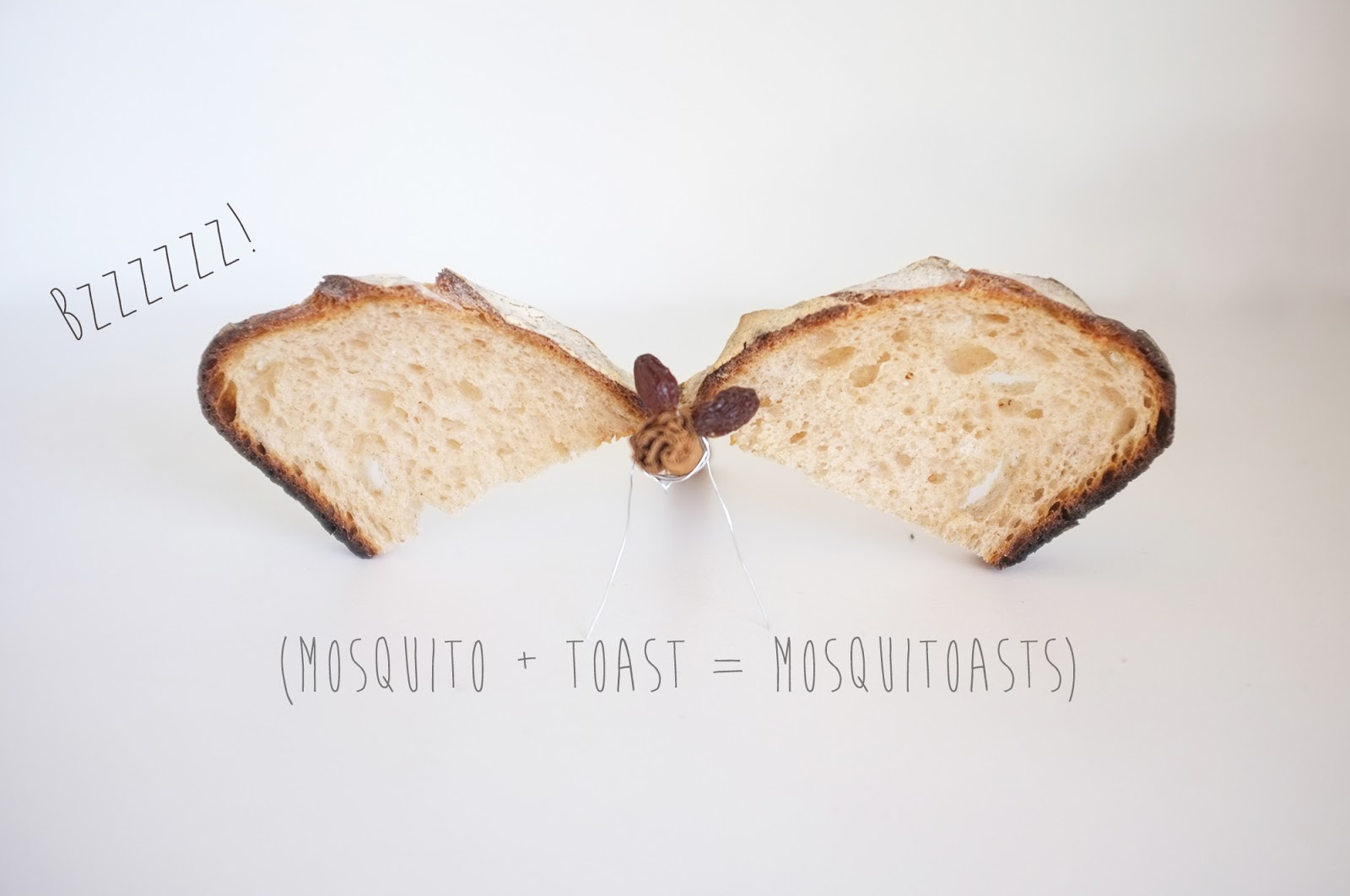 cloudy-with-a-chance-of-meatballs-2-mosquitoast