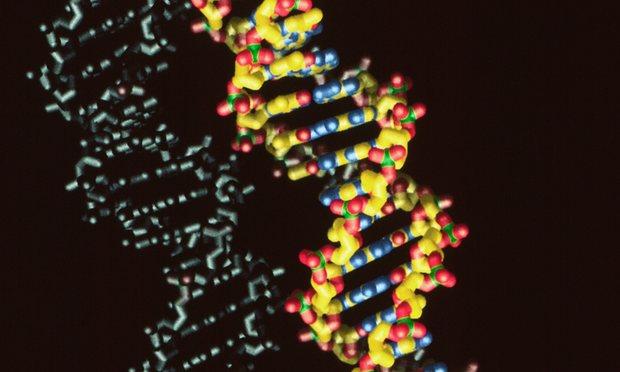 حمضنا النووي الـDNA