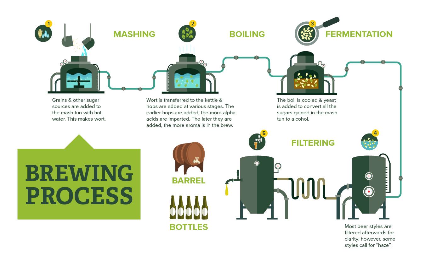 Beer Making Process Cheat Sheet by Davidpol - Download ...  |Beer Fermentation Process Diagram