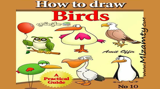 تعلم رسم الطيور خطوة بخطوة