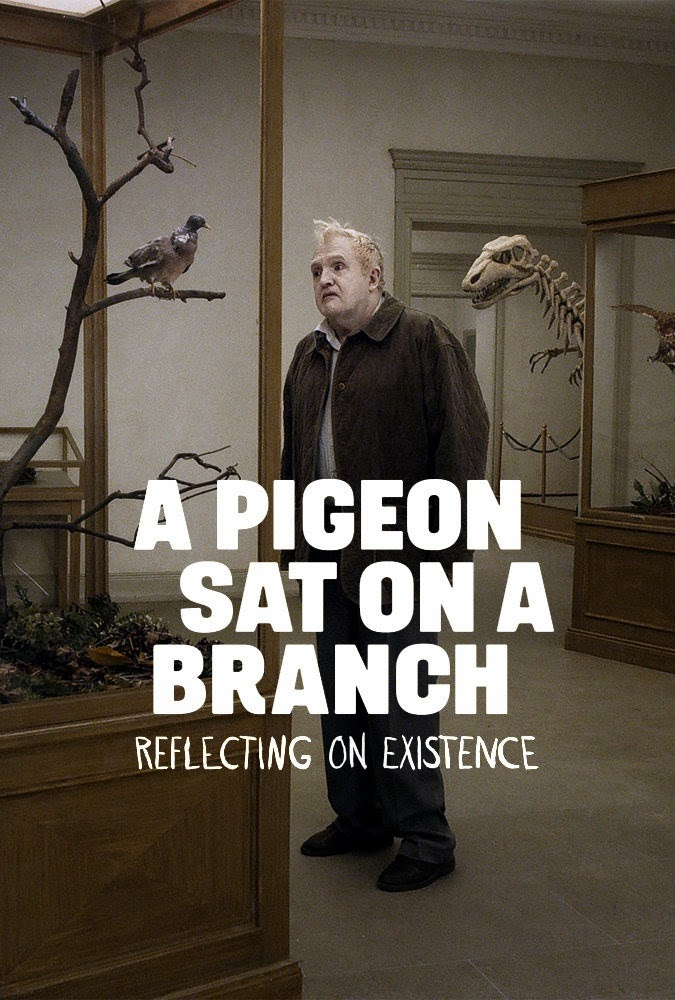 a pigeon sat on a branch reflecting on existence-insanlari seyreden guvercin