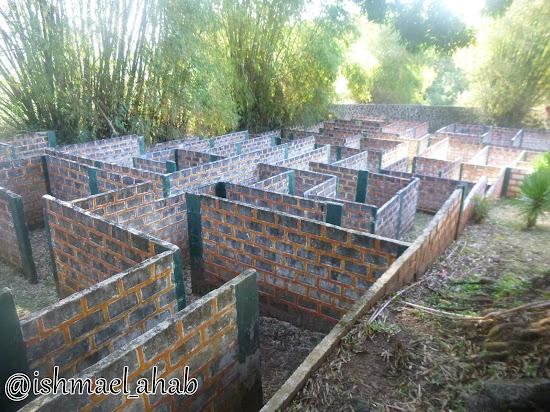 Maze in Punta de Fabian in Baras, Rizal