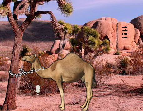 Games2Rule Arabian Desert Escape Walkthrough