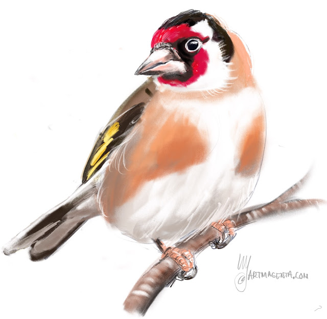Goldfinch Bird painting by Artmagenta