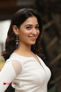 Actress Tamannaah Pictures at Abhinetri Movie Interview  0014