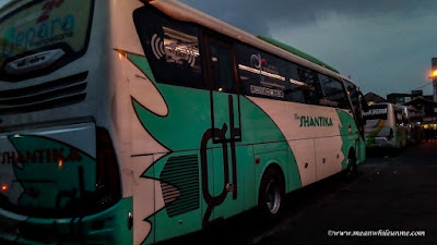 pilihan bis jurusan Bandung Pekalongan Bus PO New Shantika reclining seat eksekutif medium