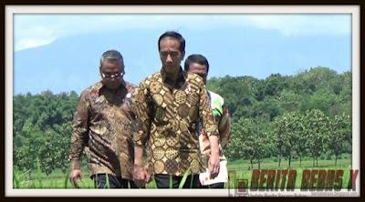 Kejadian, Polemik, Politik, Partai Politik, aksi demo, Ahok, Ahok Gubernur DKI, Jokowi, 04 November 2016, peta koalisi, jokowi panen raya