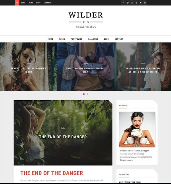 Wilder Responsive Camera Blogger Template